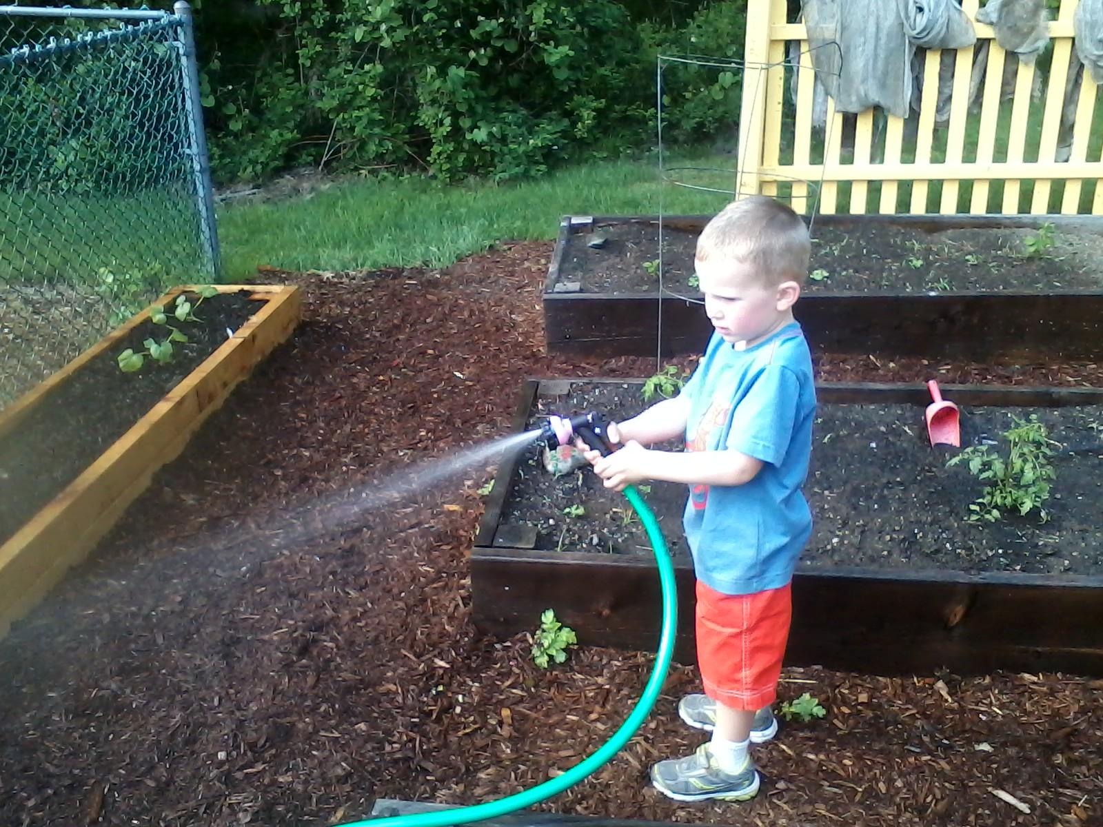 Matthew Greco watering
